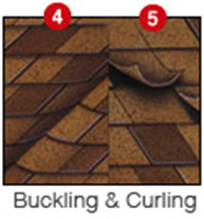 Buckling & Curling